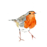 Cute Robin watercolor painting,original painitng, Wild life art, Robin watercolor, Birds art, A4 8.3 x 11.7 nursery decor,  Christmas,
