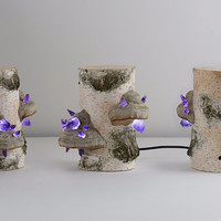 Rejuvenation potion lamp - Mushroom USB lamp - Glowing amethyst - Specimen 12 - Shroom in the Room