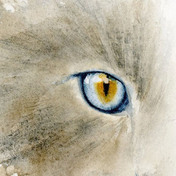 Cat eye watercolor print, feline watercolor cat print, blue eyes, gray cat, animal wall art, cat whiskers, 5 x 7 cat art print