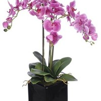 House of Silk Flowers Artificial Triple-Stem Phalaenopsis Orchid Arrangement, Lavender