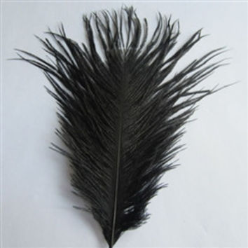 Decorative Ostrich Feathers, 15-inch, 1-feather, Black