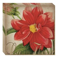 La Fleur Canvas Wall Art (2068) - Illuminada