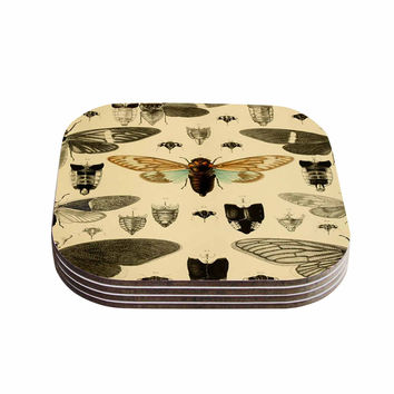 "Suzanne Carter ""Vintage Cicada"" Bugs Pattern Coasters (Set of 4)"