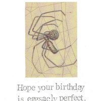 Eggsacly Perfect Birthday Card | Funny Spider Nature Humor Insect Pun Weird Nerdy Gothic Men Women