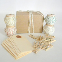 Shimmer Holiday Gift Tag Set, 4 Varieties of Shimmer Twine, 20 Manila Gift Tags, 10 Clothes Pins, Hostess Gift, Secret Santa Gift
