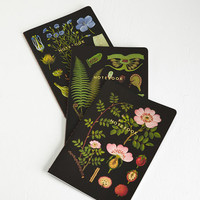 Chronicle Books Rustic Plant an Idea Notebook Set