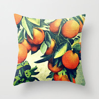 Decorative Pillow  | Throw Pillow Cover | 1930s Florida Oranges | Beach House Decor |  Botanical Photograph | Vintage Beach