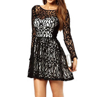 Sheer Lace Long Sleeve Skater Dress