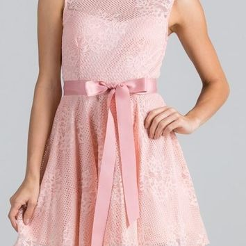 Point Of Perfection Illusion Blush Pink Lace Tulle Dress