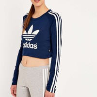 adidas Paris Blue Cropped Tee - Urban Outfitters