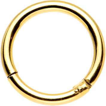 "16 Gauge 5/16"" Gold Anodized Titanium Hinged Segment Ring"
