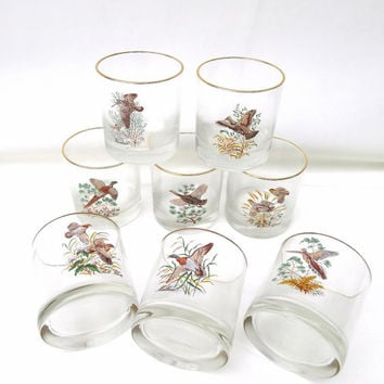 Gold Rimmed Glasses / Vintage Highball Glasses / Duck Decor Cocktail Glasses - Mid Century Barware, Set of 8