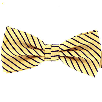Tok Tok Designs Formal Dog Bow Tie for Large Dogs (B460)