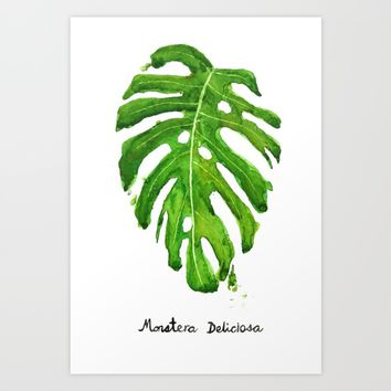 Monstera Deliciosa Art Print by Color and Color