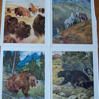 Lot of 20 Douglas Allen Wildlife-Hunting Art Prints - Book Pages - 10 x 13 inch