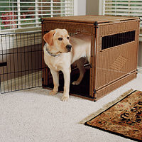 Lux Pet Crate Mattress