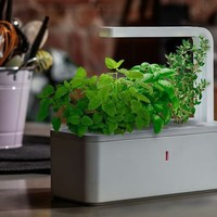 Smart Herb Garden by Click & Grow