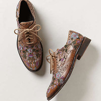 Molina Embroidered Oxfords