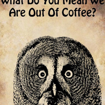 owls face no coffee bird digital image download printable art animal graphics humor funny art