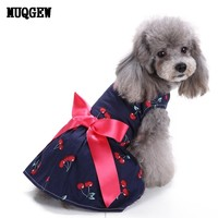 2018 dogs and cats dress