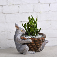 Small Rabbit Cactus Succulent Planter Pot Container Gardens