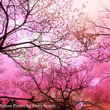 """Nature Photos - Dreamy Surreal Pink Trees - Whimsical Pink Fantasy Nature - Fairytale Nature Trees - Fine Art Photo 9"""" x 12"""""""