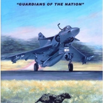 CHEETAH - Guardians of the Nation - Winston Brent