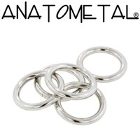 Anatometal: Stainless Steel Seam Ring