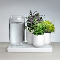 Tableau : Automatic House Plant Watering Tray