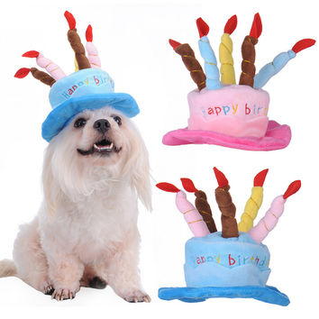 Birthday Cake with Candles Dog Hat
