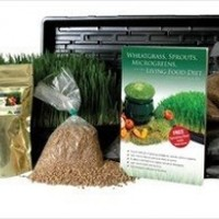 Hydroponic Organic Wheatgrass Growing Kit - Grow Wheat Grass without Dirt / Soil - Complete Grow Kit