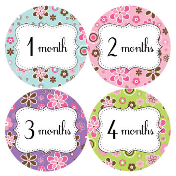 Baby Girl Monthly Baby Stickers Style #210