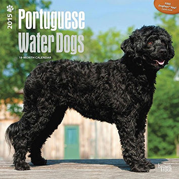 Portuguese Water Dogs 2015 Wall Calendar