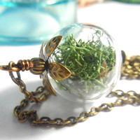 Green Moss Filled Terrarium Orb Botanical Woodland Organic Brass Jewelry Gift