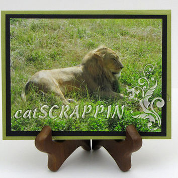 Lion Photo Print card, Fort Wayne Zoo, Fine Art Print, All Occasion Card, blank, greeting card, olive green, handmade, custom