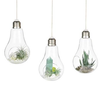 Set of 3 Glass Hanging Planters Glass Bulb Planters Hanging Air Plant Containers Hanging Glass Terrariums