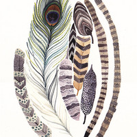 Feathers  -Large  Archival Print