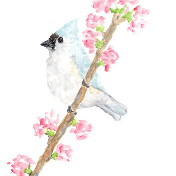 Watercolor Painting, watercolor bird, bird painting, bird art, cherry blossoms, tufted titmouse, blue bird, pastel art, bird print, 8X10