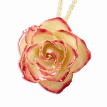 20 Inch Lacquer Dipped Cream & Pink Rose w/ Gold-plated Chain