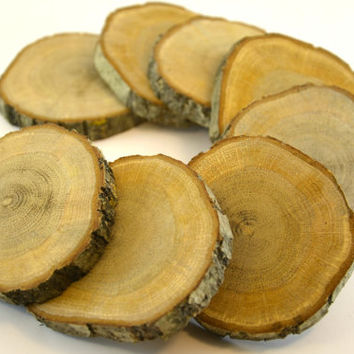 5 pieces of Unfinished Oak Tree Wood Coasters for rustic wedding decors, home wooden decors, wood slice, oak wood disc for wood crafts