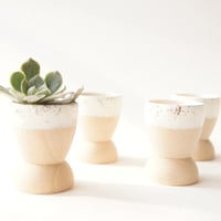 Mini Planters set of 4, Snow White Sparkle, wedding favors, modern home decor, Stocking Stuffers