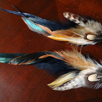 Colorful Feathers long extension feather by EudaimoniaJewelry