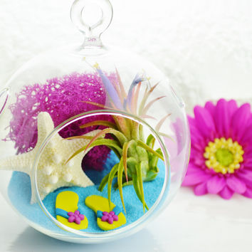 Flip Flops in the Sand Terrarium ~ Glass Globe Hanging Terrarium Kit with Tillandsia Air Plant