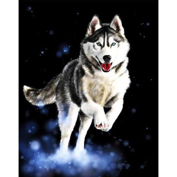 frameless huskies animals diy digital painting by numbers hand painted modern wall art oil painting home decor artwork 40x50cm