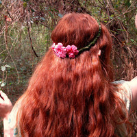 Enchanted Fairy Circlet with Pink Flowers on Mossy Base