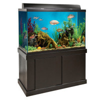 150 Gallon Fish Tank » Top Fin™ Black Aquarium with Canopy, Light and Stand | PetSmart