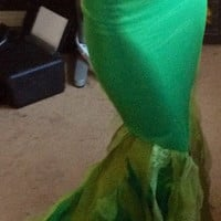 Mermaid tail, walking Ariel tail