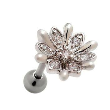 Fashion flower Stainless steel zircon earrings antiallergic tragus Earring-0427-Gifts box