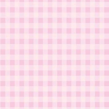 PINK GINGHAM CHECKER BACKDROP - 1343 PLATINUM CLOTH - 5x6 - LCPC1343 - LAST CALL