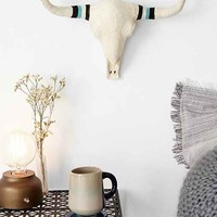 4040 Locust Wrapped Horns Bison Skull- Turquoise One